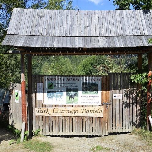 Park Czarnego Daniela Zawoja